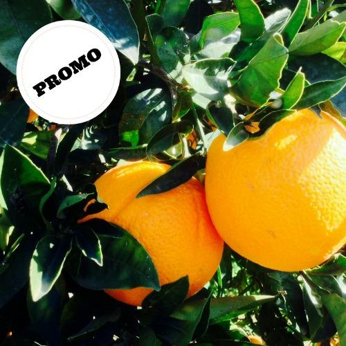 vanilla oranges