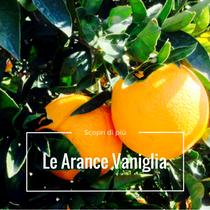 arance vaniglia bio