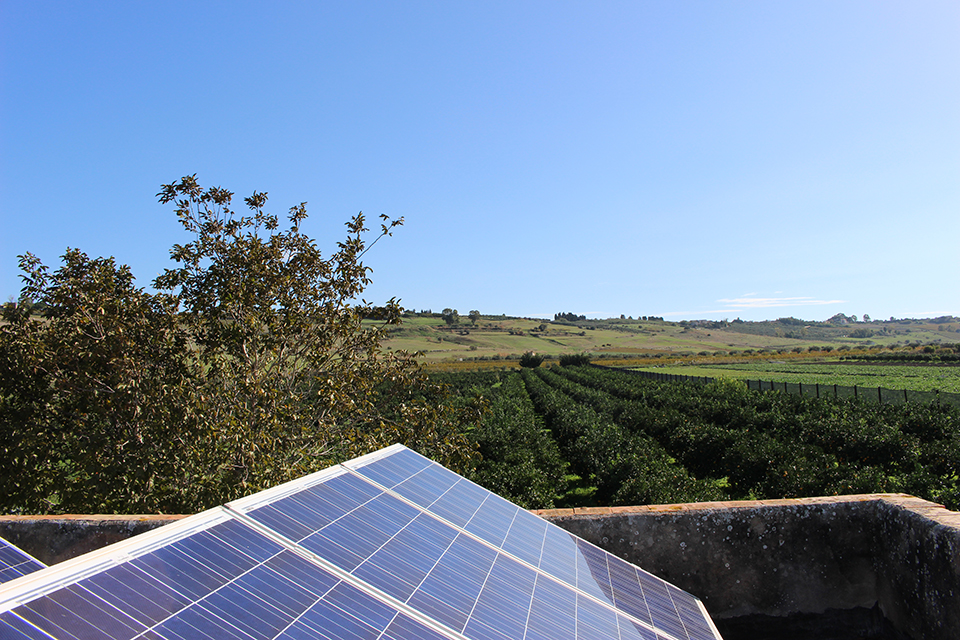 produzione eco-sostenibile