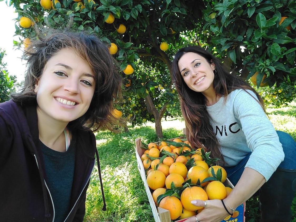 comprare arance